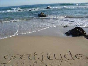 gratitude2-300x225